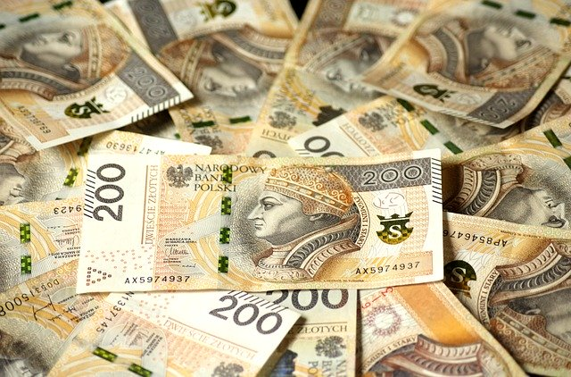złoty czy waluta